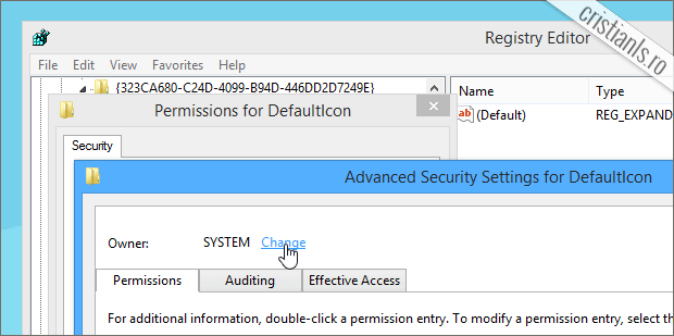 Advanced Security Settings for DefaultIcon