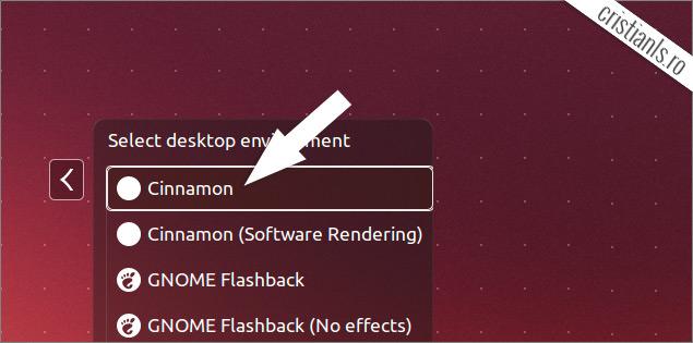 Activare Cinnamon în Ubuntu 13.10