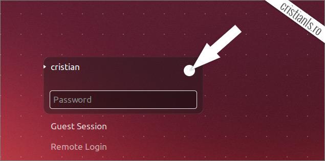 alege interfata grafica in Ubuntu 13.10