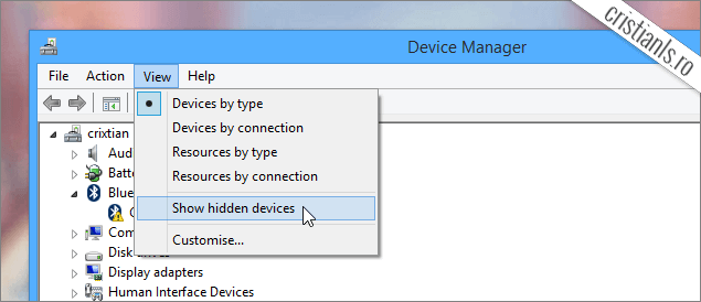 Device Manager: Show hidden devices