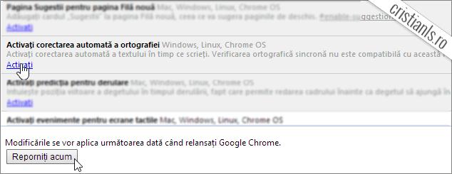 corectarea automata a ortografiei în google chrome