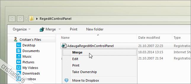 Registry Editor Control Panel