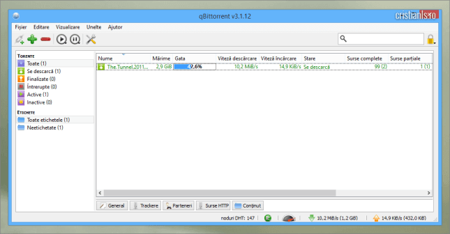 qtorrent - program de descarcat fisiere de pe torrenti