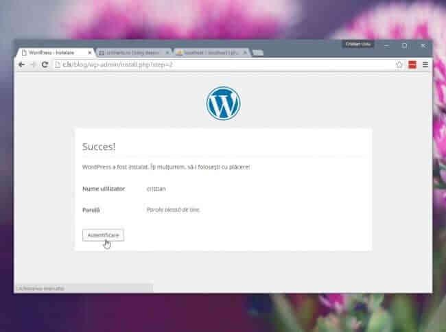 wordpress - succes