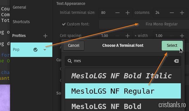 MesloLGS NF Regular