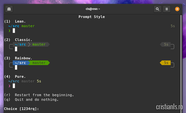 prompt style zsh