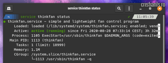 service thinkfan status